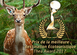 Thea Awards Bois aux Daims