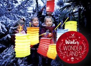 Winter activités