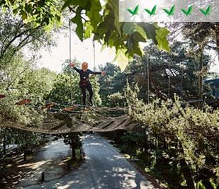 5-Birdies-Parks