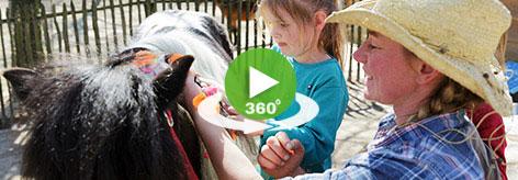 Pony Vakantie Meerdal 360-video