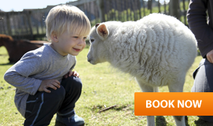 Early booking discount toddlers