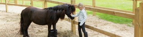 Vacances avec mon poney