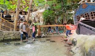 Discovery Bay & Jungle Dome