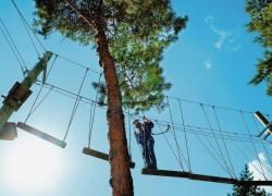 High Adventure Het Heijderbos