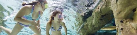 Cenote Pool