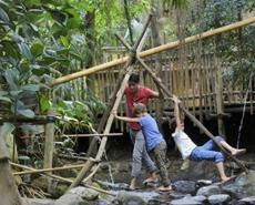 Jungle Dome mit Jungle Expedition