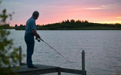 Fischbestand Sandur