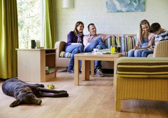 Hund_Ferienhaus