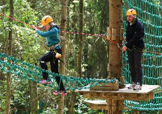 Wij hebben diverse activiteiten in het bos