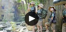 Video het Heijderbos