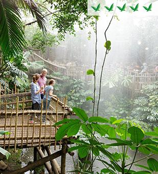 5-Birdies parks