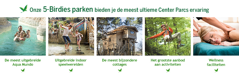 5-Birdies park