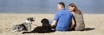 Ferien mit Hund