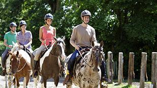 Balade à cheval ou à poney