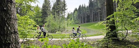 Vakantiepark Frankrijk - Les Trois Forêts