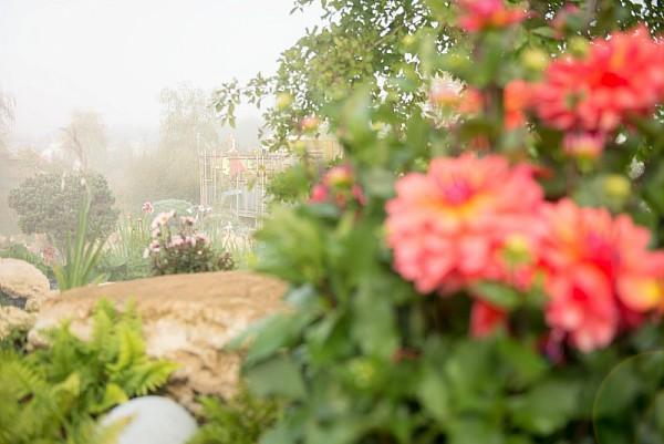parc floral proche paris