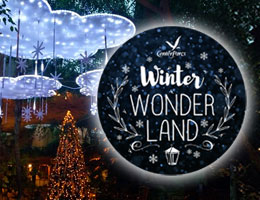 Winter Wonderland bei Center Parcs