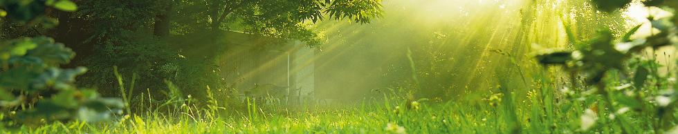Bungalow in het voorjaar